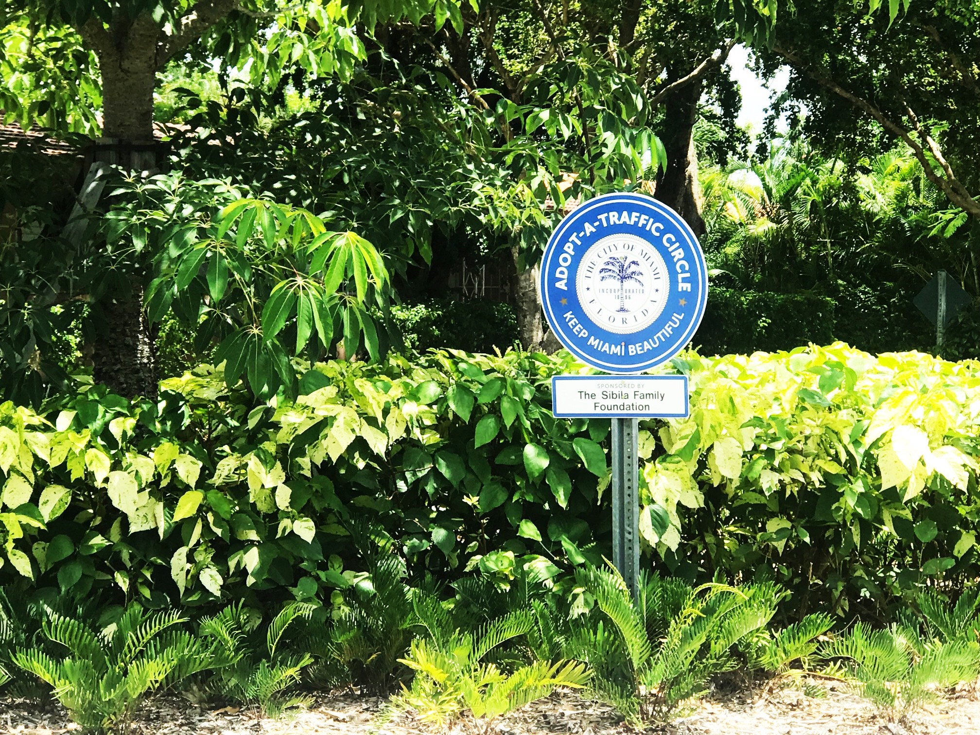 Sibila Family Foundation Circle